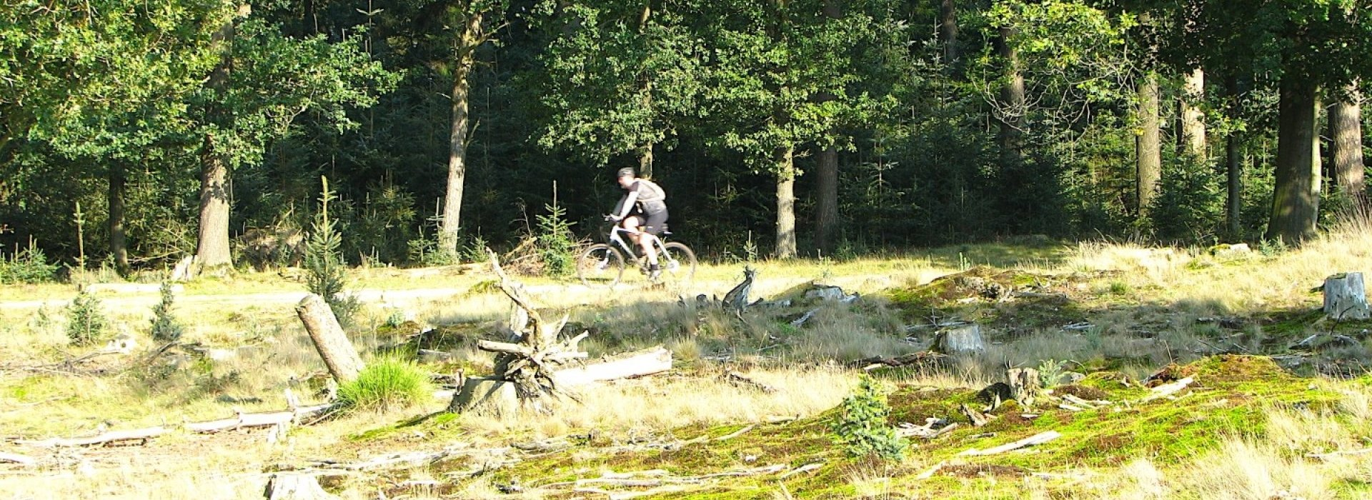 mountainbiken-in-drente_1.jpg